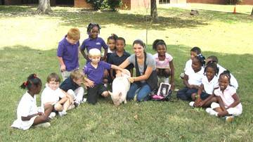 "Pot-bellied pig ""Fiona"" visits Anderson"
